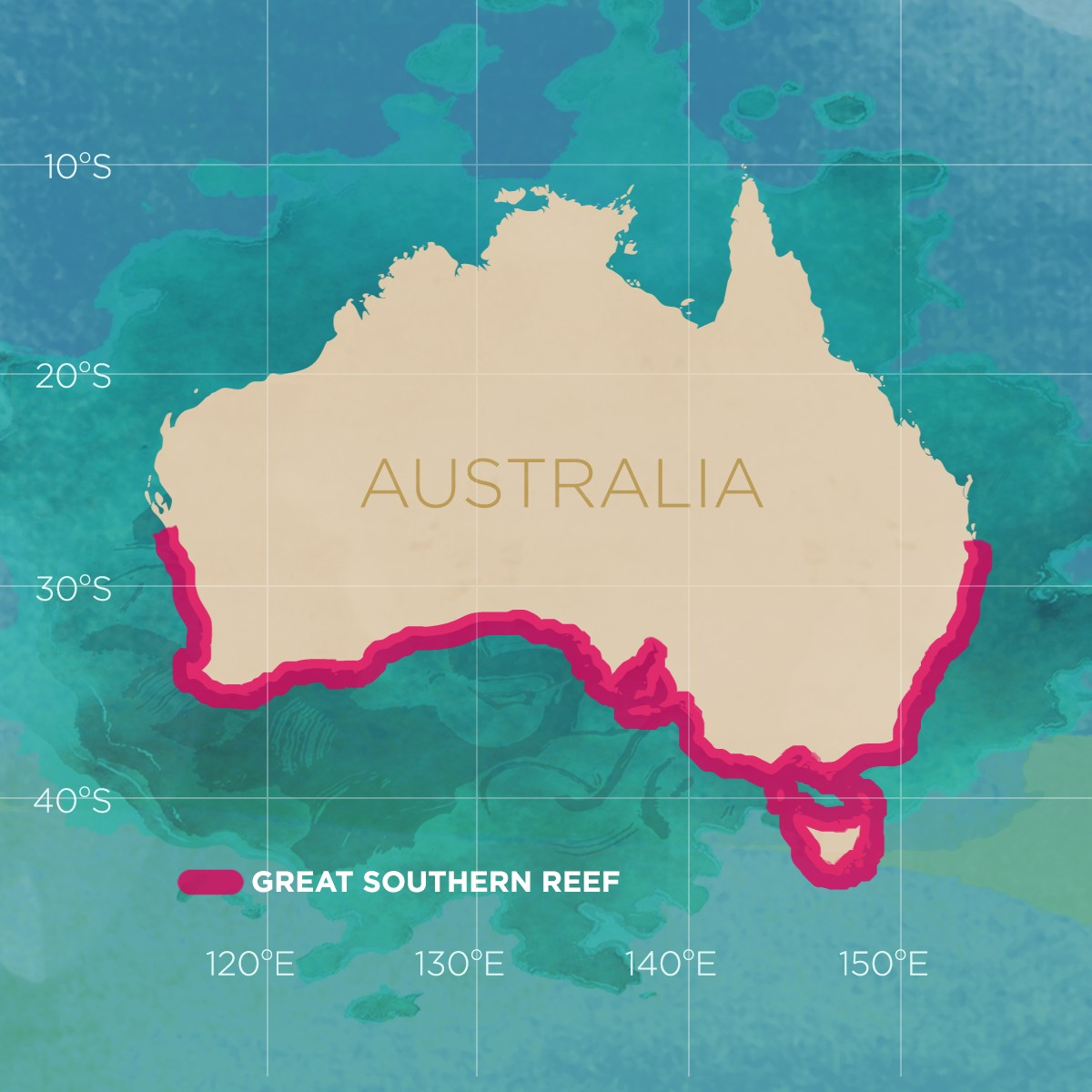 Who's Heard Of The Great Southern Reef?