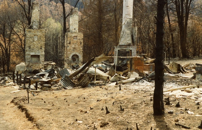 Aftermath from the 1983 Sydney bushfires.
