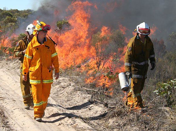 Firefighters wearing protective clothing while undertaking a prescribed burn.