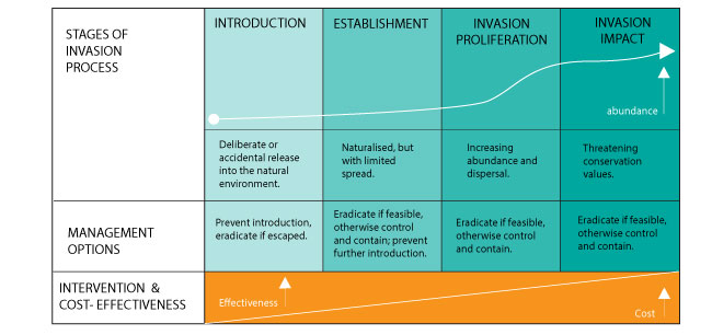 Invasion processes and management options (Source: Invasive Species Council)