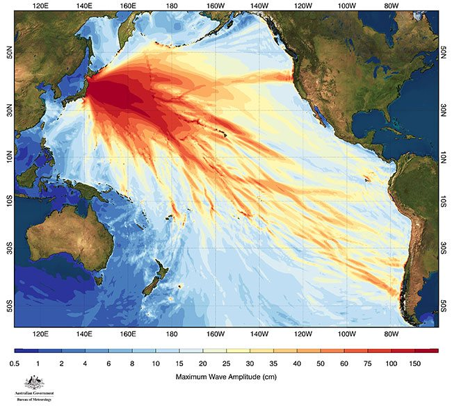 Diagram showing wave amplitude of 2011 tsunami