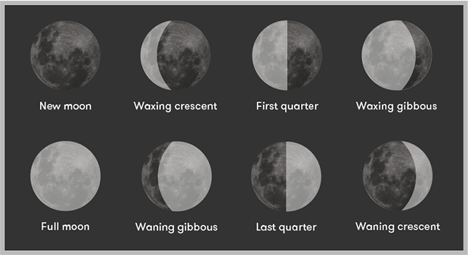 The phases of the moon: new moon, waxing crescent, first quarter, waxing gibbous, full moon, waxing gibbous, last quarter, and waning crescent.