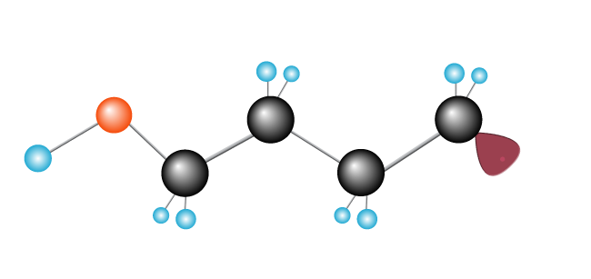 Second ethylene molecule is introduced