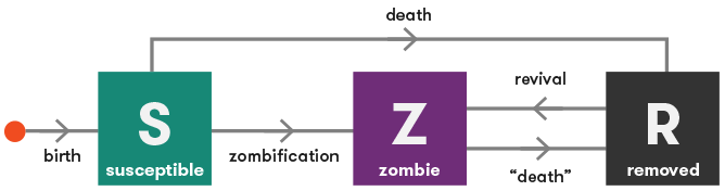 Flowchart: under the basic model of zombie infection, we have three states: susceptible (S), zombie (Z) and removed (R). S can become Z (by zombification) or R (by dying); Z can become R (by death); and R can become Z (by revival).