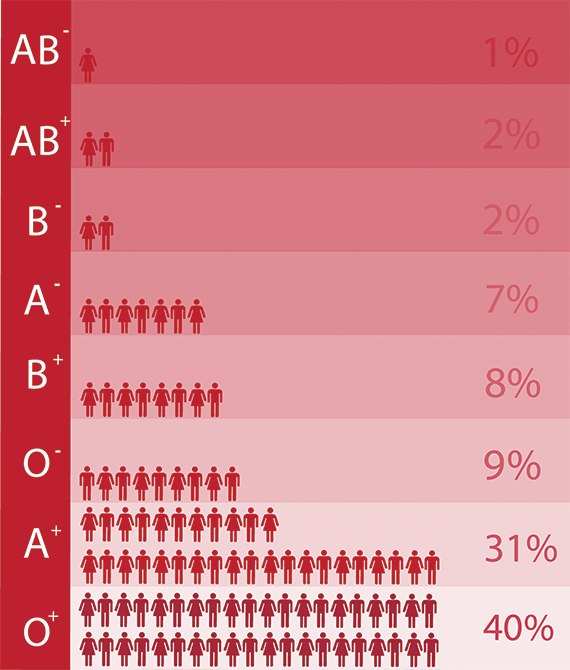 A diagram showing the percentage of people in Australia with each blood type. O positive: 40 per cent; O negative: 9 per cent; A positive: 31 per cent; A negative: 7 per cent; B positive: 8 per cent; B negative: 2 per cent; AB positive: 2 per cent; AB negative: 1 per cent.