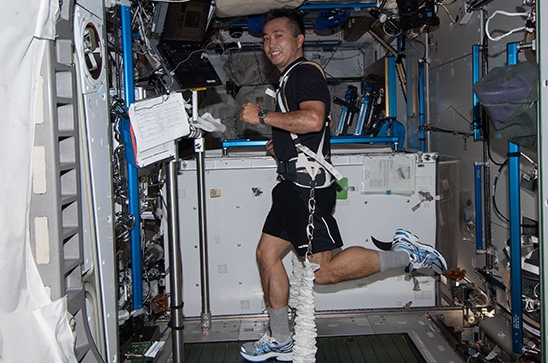 Astronaut Koichi Wakata exercising while equipped with a bungee harness on board the International Space Station.