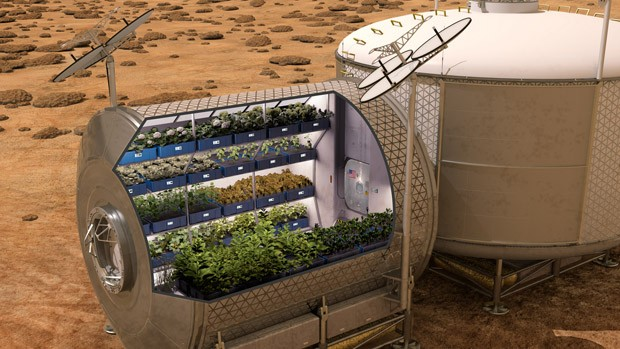 Trays of plants in a sheltered structure on the surface of Mars.