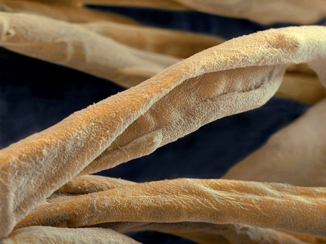 Textile fibres treated with nanotechnology to make them stain resistent