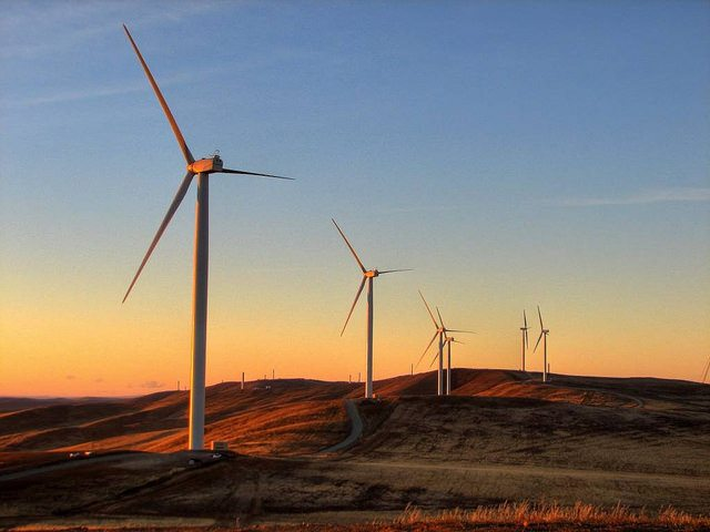 energy from the wind essay