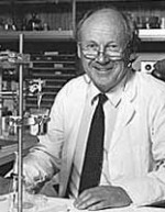 Professor David Curtis