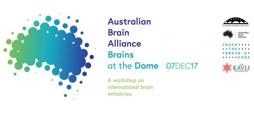 Brains at the Dome