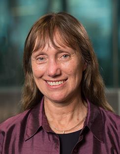 Professor Kerrie Mengersen