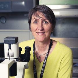 Associate Professor Jill Carr