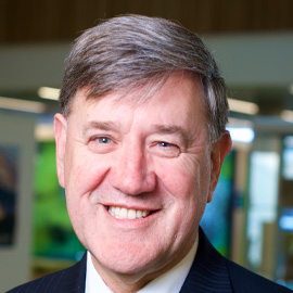 Emeritus Professor Peter Lee FTSE